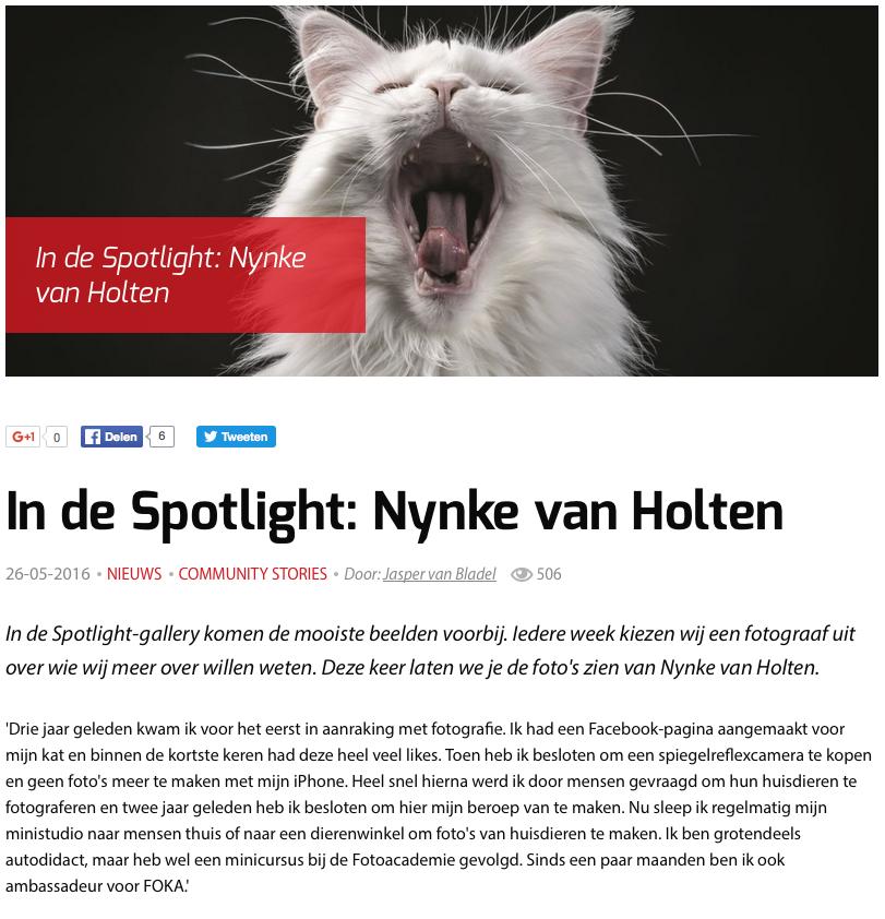 digifotopro, spotlight
