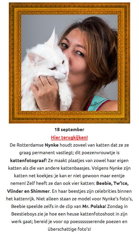 beestieboys poezenvrouwtje cat'chy images kattenfotograaf rotterdam