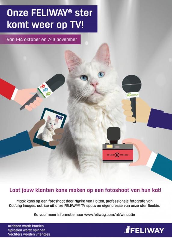 Feliway, Ceva, winactie, gratis, cat'chy images, kattenforgrafie, dierenfotograaf rotterdam