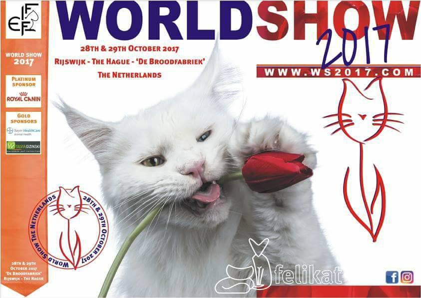 WS2017, world show 2017, wereld show 2017, rijswijk, Tw'Ice, Catchy Images, dierenfotograaf Rotterdam