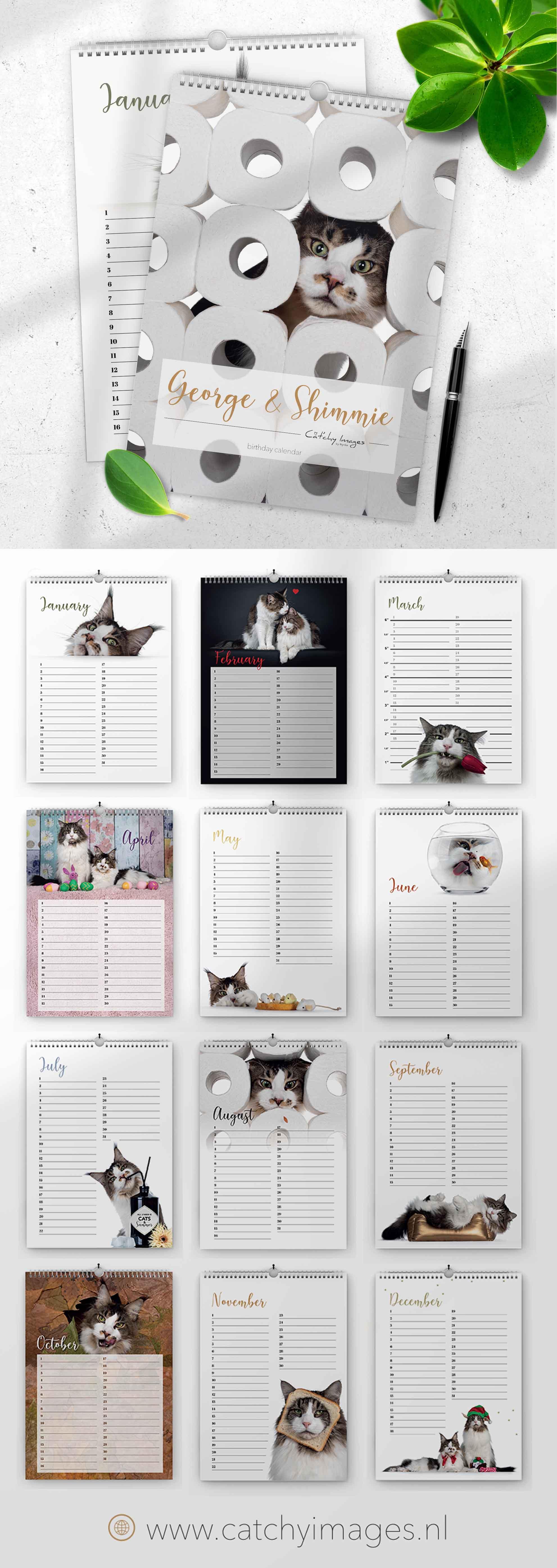 calendar, goodies, cats